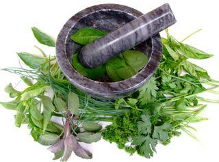 Herbs mortar pestle