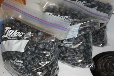 Blueberries-in-bags