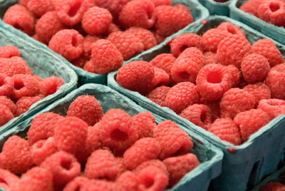 Raspberries-in-containers