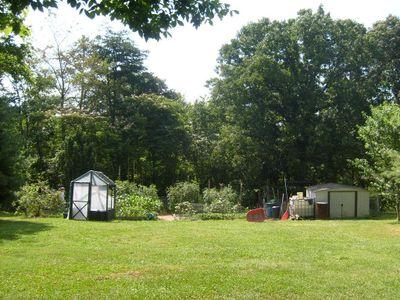 Ambers garden3