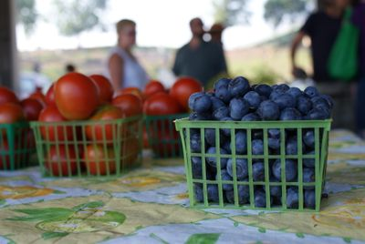 Carton of blueberries