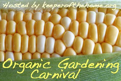 Organic-gardening-carnival-large